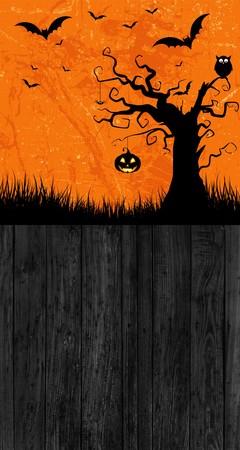 Tło halloween 160x300 cm / W05 (1)
