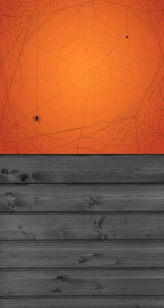 Tło halloween 160x300 cm / W10 (1)